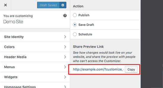 Share customizer changes preview