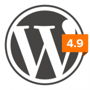 What's New in WordPress 4.9 by DW faisalabad