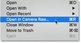 Choosing the Open in Camera Raw command in Adobe Bridge.