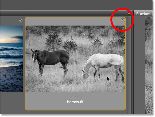 The Camera Raw settings icon appears in the upper right of the TIFF file thumbnail.