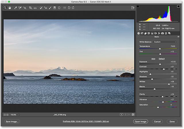 The Adobe Camera Raw plugin.