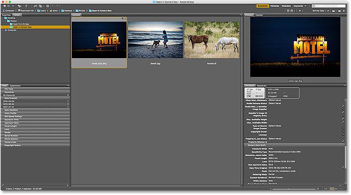 Back to Adobe Bridge after closing Camera Raw.