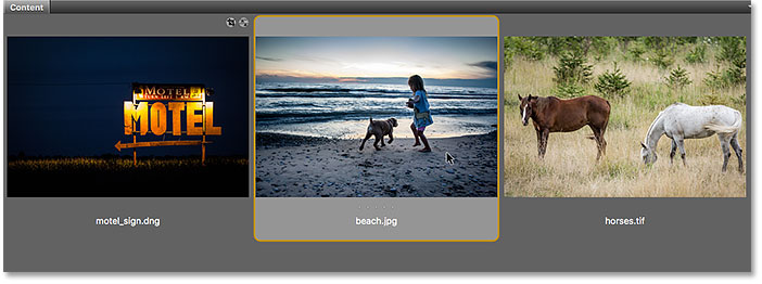 Double-clicking the JPEG file thumbnail in Adobe Bridge.