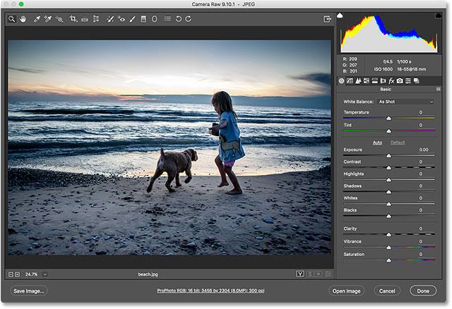 The JPEG image opens in Camera Raw from Adobe Bridge.