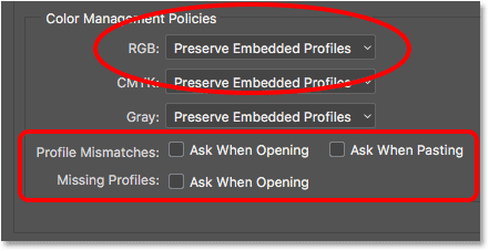 The Color Management Policies options.