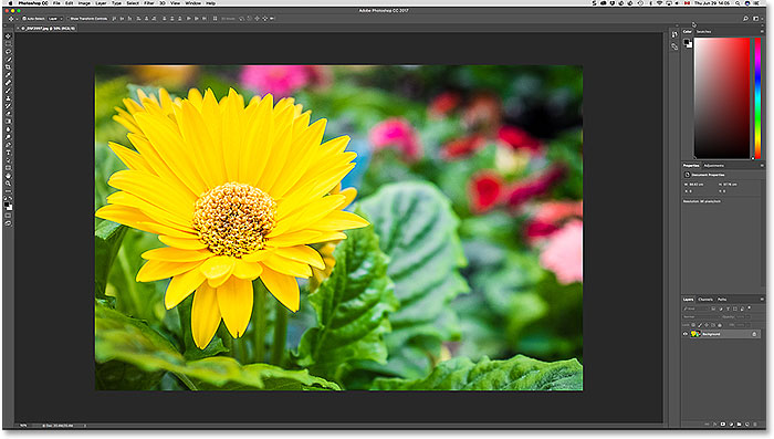 Adobe Photoshop with one image currently open. Photo copyright Steve Patterson.