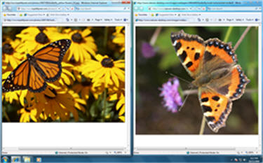 Windows 7 Desktop with 'ro Snap
