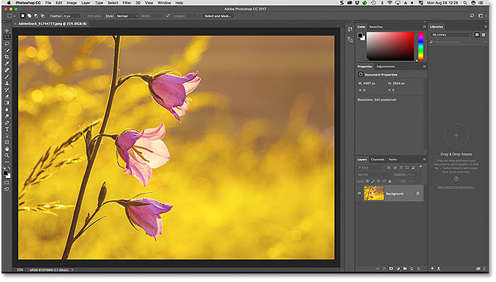 The default Essentials workspace in Photoshop. Image licensed by Adobe Stock.