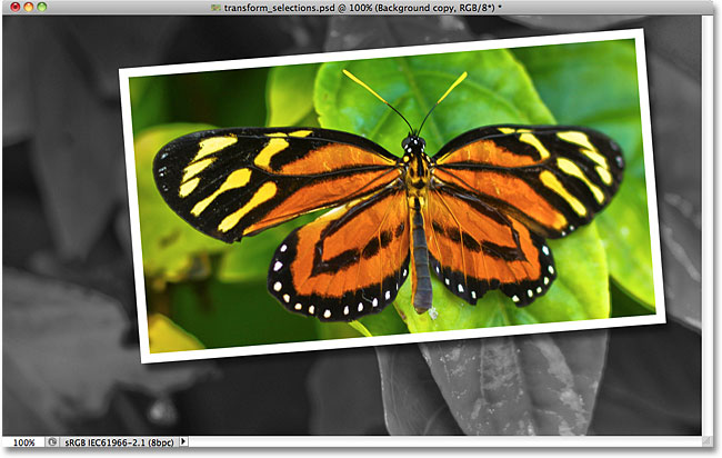 Photoshop picture-in-picture effect.