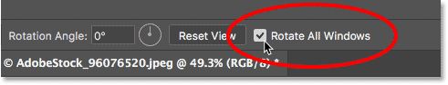The Rotate All Windows option for the Rotate View Tool in Photoshop