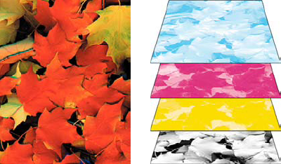 Composite (left) and separations (right)
